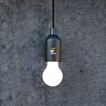 Luxury lamp with EY branded packaging
